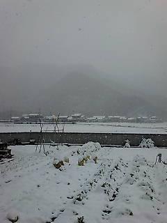 大雪警報の景色Ⅱ